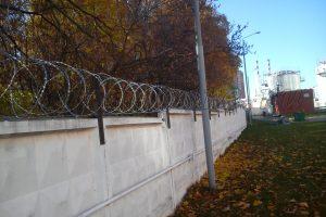 Егоза забор