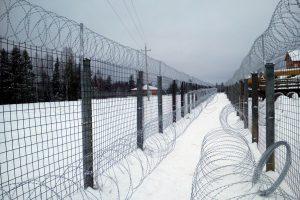 Забор двойной Егоза